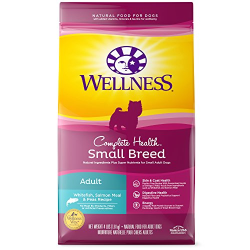 Wellness Complete Health Natural Dry Small Breed Dog Food, Salmon & Peas, 4-Pound (Wellness Adult Salmon)