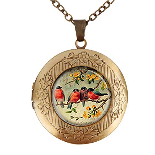 (Women's Custom Locket Closure Pendant Necklace Robin Feathered Friends Bird Friendship Included Free Chain, Best Gift Set)