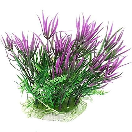 Amazon.com : eDealMax acuario plástico Grass/planta, 7, 1 pulgadas, púrpura/Verde : Pet Supplies