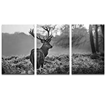 Sea Charm - 3 Panel Wall Art Painting Red Deer Stage In Autumn Forest Pictures Prints On Canvas Animal Art Print For Home Modern Decoration ¡