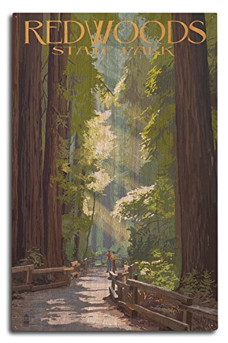 Redwoods Park, California - Pathway in Trees (10x15 Wood Wall Sign, Wall Decor Ready to Hang) ()