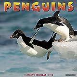 img - for Penguins 2018 Calendar book / textbook / text book