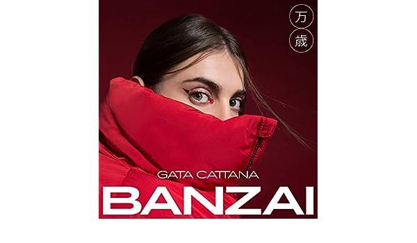 2e633fda5aecd Gata Cattana Banzai