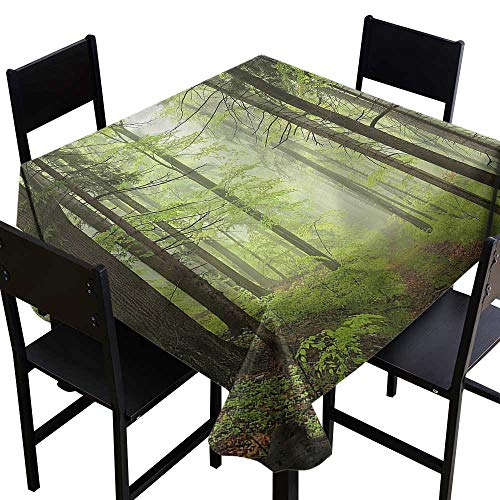 Outdoor Indoor/Outdoor Square Tablecloth Trail Trough Foggy Alders High-end Durable Creative Home 70 x 70 Inch