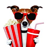 Top Selling Decals - Prices Reduced : Movie Theater Dog Soda popcorn & sunglasses Boy Girl Kid Children Picture Art Home Bedroom - Best Selling Cling Transfer Color666 Size : 30 Inches X 30 Inches - Vinyl Wall Sticker - 22 Colors Available