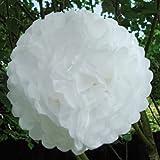 Luxbon - Pompon in panno carta, colore: bianco, confezione da 5