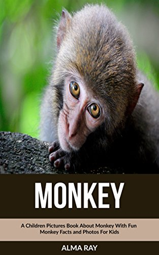 Monkey: A Children Pictures Book About Monkey With Fun Monkey Facts and Photos For Kids