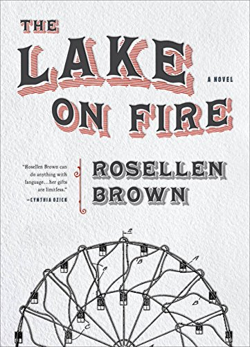 Book Cover: The Lake on Fire