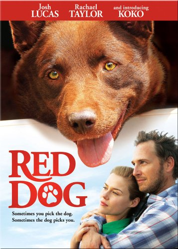 Red Dog by OUR ALCHEMY LLC