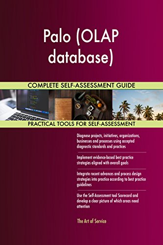Palo (OLAP database) Toolkit: best-practice templates, step-by-step work  plans and maturity diagnostics
