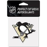 Amazon.com: NHL - Pittsburgh Penguins / Auto Accessories / Fan Shop ...