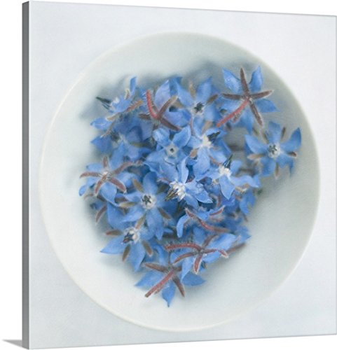 Gallery-Wrapped Canvas entitled Blue borage (borago officinalis) flowers in white bowl. by Great BIG Canvas 30''x30'' by greatBIGcanvas