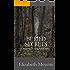 Buried Secrets: Sequel to The Cavanaugh House
