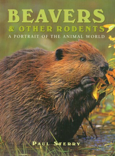 Beavers and Other Rodents (Todtri portrait of the animal world series)
