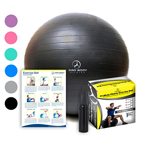 Exercise Ball - Professional Grade Anti-Burst Fitness, Balance Ball for Pilates, Yoga, Birthing, Stability Gym Workout Training and Physical Therapy (Black, 65 cm)