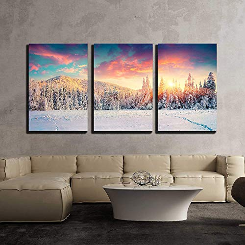 Colorful Winter Panorama in The Carpathian Mountains Fir Trees Covered Fresh Snow x3 Panels