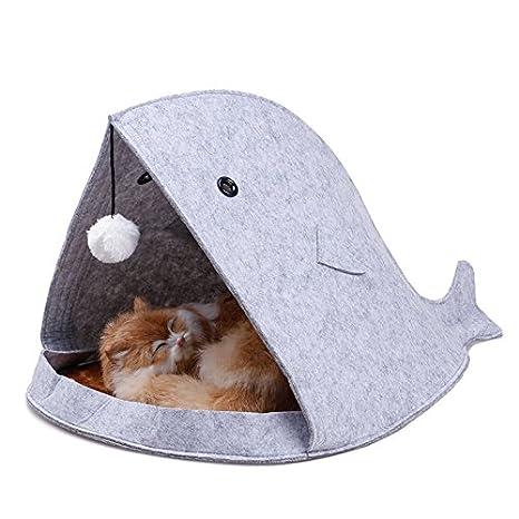 Dulcii - Cama en forma de tiburón para gato/perro cachorro (alfombra de forro