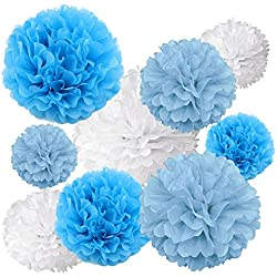 Gold Fortune 18PCS Tissue Hanging Paper Pom Poms Flower Ball Wedding Party Outdoor Decoration Tissue Paper Pom Pom Flowers Craft Kit (Blue & White)