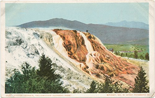 (Historic Pictoric Postcard Print   Jupiter Terrace, Yellowstone Park, 1903   Vintage Fine Art )
