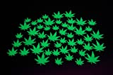 Get a total of 50 pieces with this set! Celebrate your favorite plant with these fun, unique, glow pot leaf pieces. Multiple sizes are included as well as non toxic adhesive for sticking to walls and or ceilings. These pieces glow very bright for 1 t...