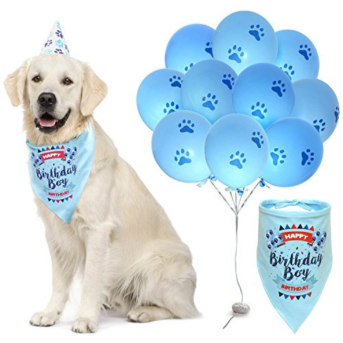 ZOOniq Dog Birthday Boy Bandana with Paw Print Party Cone Hat and 10 Balloons - Great Dog Birthday Outfit and Decoration Set - Perfect Dog or Puppy Birthday Gift -
