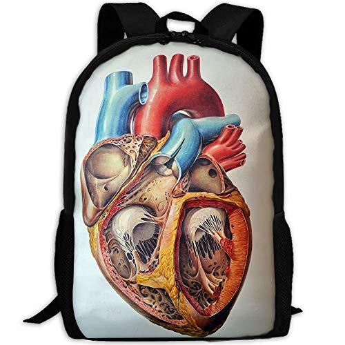 3D Human Anatomy Heart Chart Unisex Backpack Lightweight Laptop Bags Shoulder Bag School Bookbag Daypacks ()
