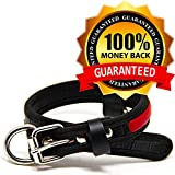 Logical Leather Premium Leather Dog Collar - Best
