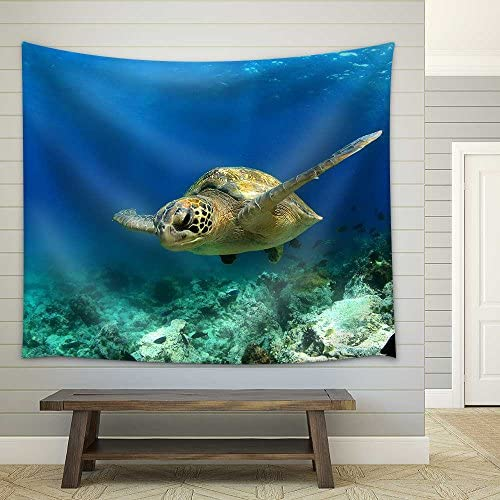 Green Sea Turtle Swimming Underwater Fabric Wall