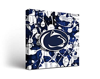 Amazoncom Victory Tailgate Penn State Psu Nittany Lions Canvas