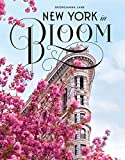 img - for New York City in Bloom book / textbook / text book