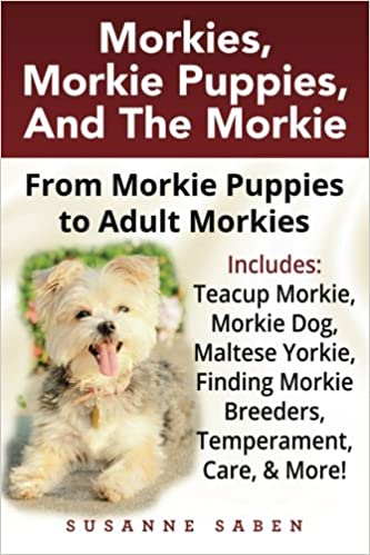 Morkies, Morkie Puppies, And The Morkie: From Morkie Puppies