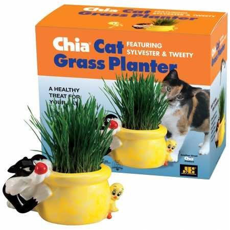 Chia Grass Planter Snoozy Kitty
