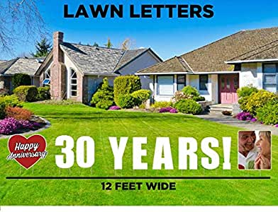 Amazon.com : 30th Anniversary Decorations, Yard Signs and ...