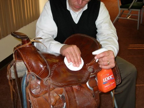 Lexol 1115 Auto Interior Leather Deep Cleaner, 16.9 oz