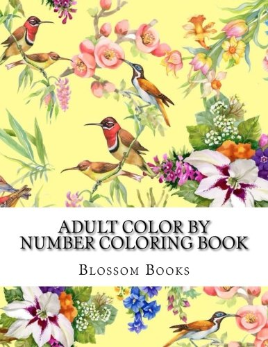 Adult Color By Number Coloring Book Jumbo Big Coloring By Numbers