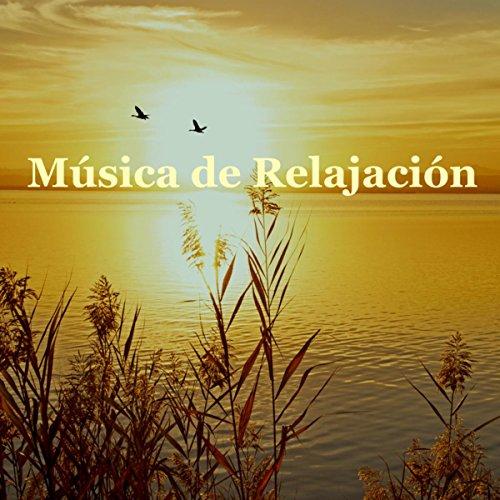 M sica de relajaci n para meditar sonidos de lluvia para dormir bien m sica instrumental para - Relajacion para dormir bien ...