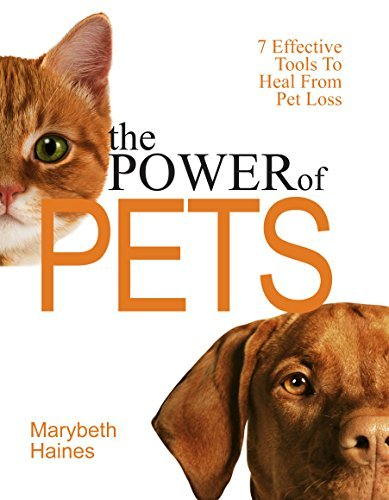The Power of Pets: 7 Effective Tools To Heal From Pet Loss