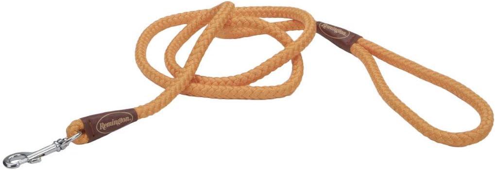 Remington deportivas perro trenzado cuerda correa, Naranja, Snap ...