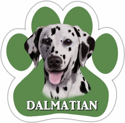(Dalmatian Car Magnet With Unique Paw Shaped Design Measures 5.2 by 5.2 Inches Covered In UV Gloss For Weather)