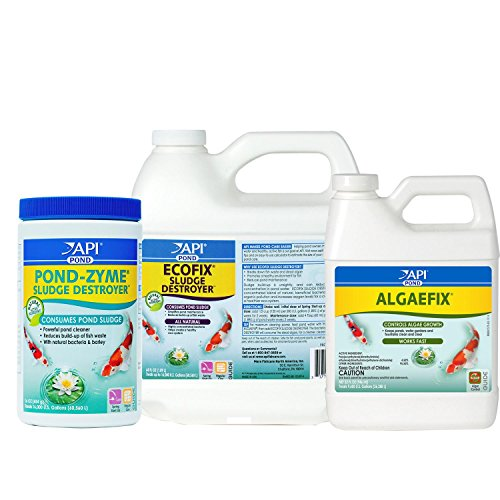 Clever Api Pond Algaefix 32 Oz To Prevent And Cure Diseases Aquariums & Tanks Fish & Aquariums