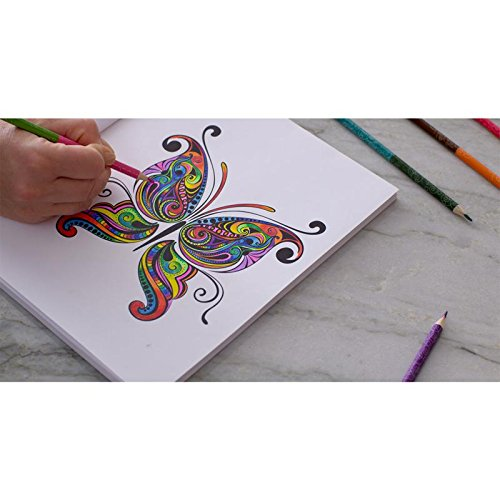 Amazon Colorama And Magic Path Coloring Books Collection With 6 2Sided Pencils