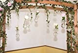 YongFoto 5x3ft Photography Backdrop Garden String Glass Vase Fresh Flowers Green Leaves Vine Wood Pergola White Wall Photo Background Backdrops Photography Video Party Kids Portrait Photo Studio Props