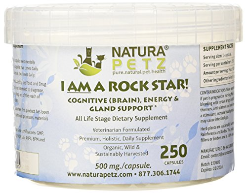 I AM A ROCK STAR! Memory, Gland (Hypothalmic, Pituitary and Adrenal) and Energy Support for All Life Stage Dogs and Cats, 250 Capsules, 500mg per Capsule For Sale