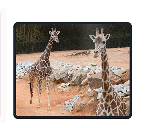 Funny Giraffe Zoo Atlanta Rectangle Non-Slip Rubber Mousepad Mouse Pads/Mouse Mats Case Cover