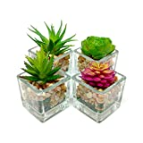 how to decorate your room Espoir Living Small Glass Cube Artificial Succulent Planters | Set Four | Assorted Faux Plants Smooth Rocks