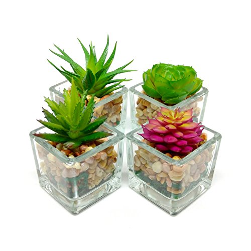 Espoir Living Small Glass Cube Artificial Succulent Planters | Set Four | Assorted Faux Plants Smooth Rocks -