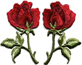 Red Rose Flowers Valentine's Day Savings & Sales & Deals 2015