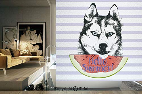 Decorative Privacy Window Film/Cute Animal Eating Watermelon Slice Fresh Summer Themed Striped Artwork Decorative/No-Glue Self Static Cling for Home Bedroom Bathroom Kitchen Office Decor Multicolor]()