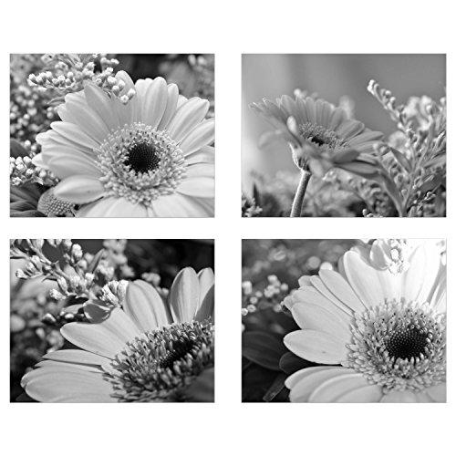 Gerber Daisies Beauty (Set of 4): Black & White Modern Art Decor Unframed Poster Prints (8