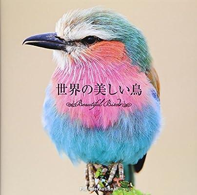 世界の美しい鳥 | 上田恵介 |本 | 通販 | Amazon